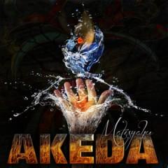 Akeda 2